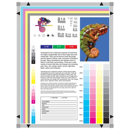 Test Chart Pack Of 10 Compatible With Precision Roller A1000 A1000