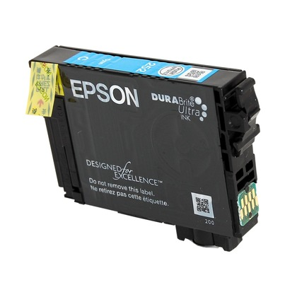 Epson T252220 Cyan Ink Cartridge (large photo)
